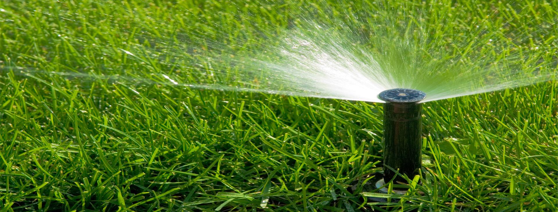 Votre pelouse et votre paysage la façon dont il devrait être